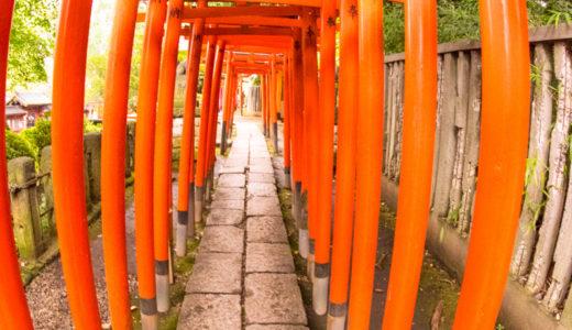 テレビでも話題の谷根千 根津神社を撮影に行ってきました