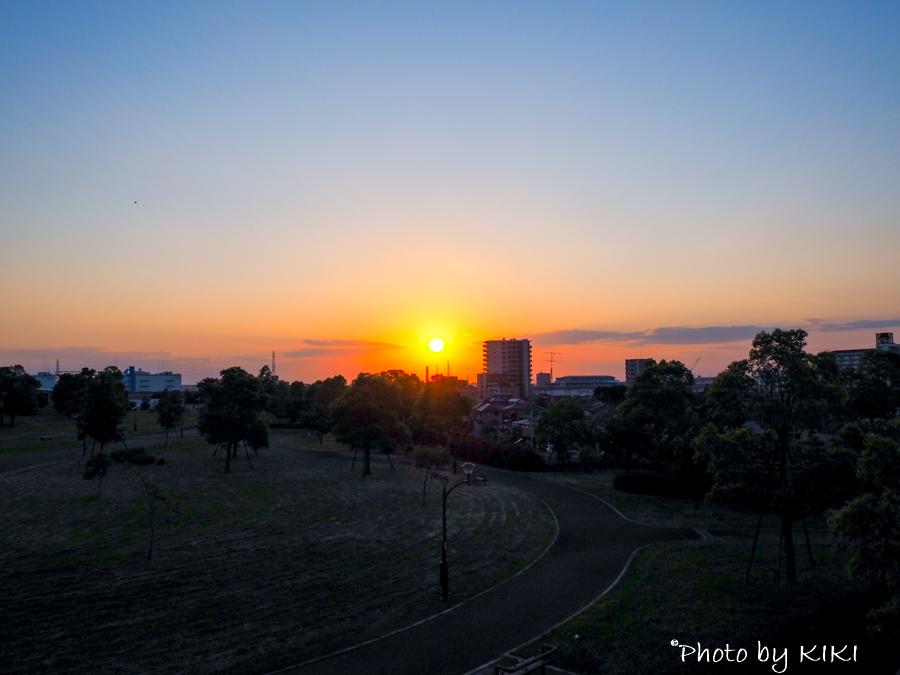 舎人公園にて夕焼け撮影