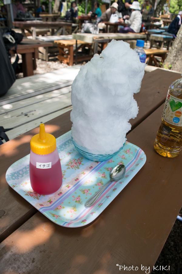高尾山 稲荷山コース(尾根コース)初夏の登山に挑戦