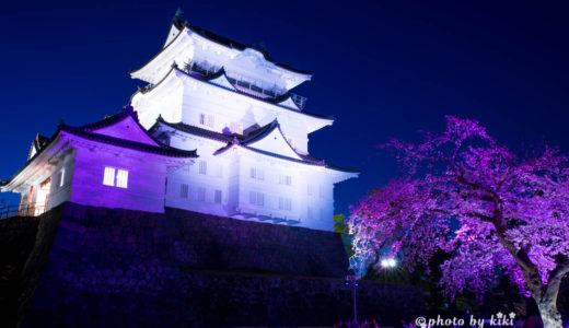 さくらの時期小田原城の撮影
